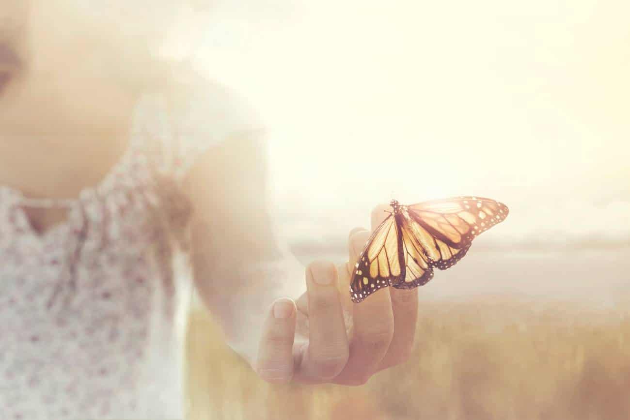 Le bijou papillon, riche en symboles